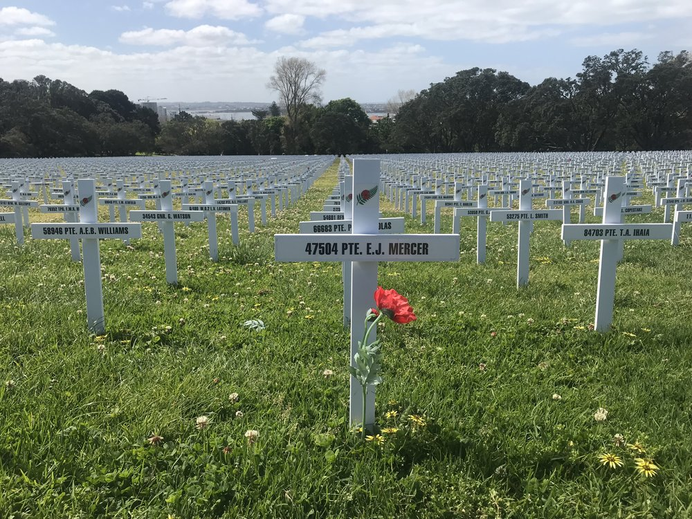 Poppies are placed by every cross in the Fields of Remembrance.