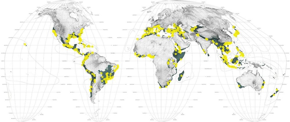 Map 1 - 'Crisis' shows the largest and fastest growing cities in the world's most biodiverse regions.