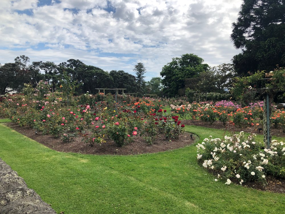 Auckland's Parnell Rose Gardens, the site of the memorial.