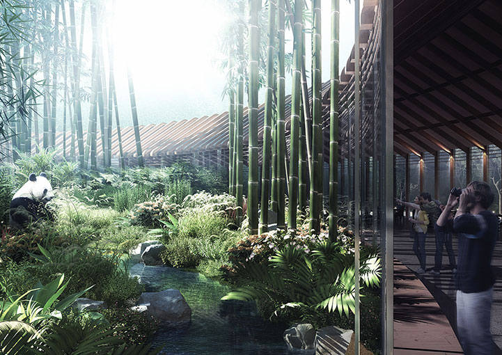 The HASSELL Studio masterplan for Chengdu has won an international design competition.