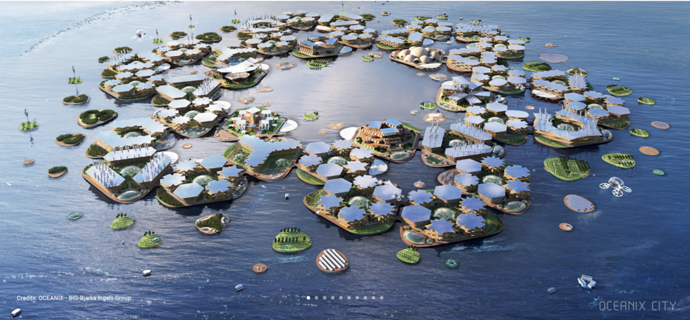 Oceanix says the technology exists for us to live on water, while nature continues to thrive under.