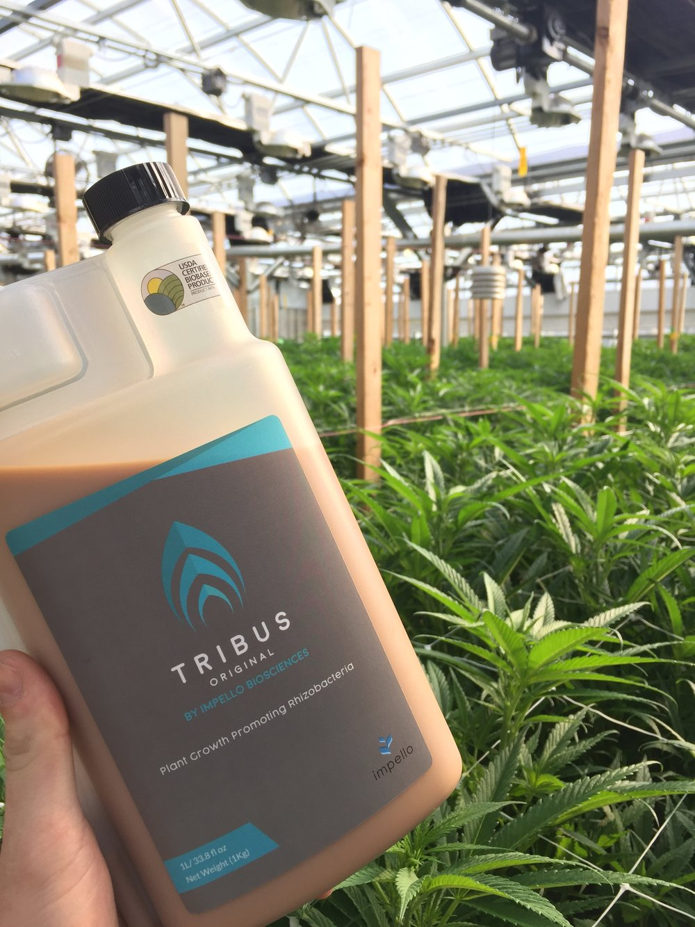 to controlled environment agriculture - Tribus is a perfect addition to any growers arsenal.