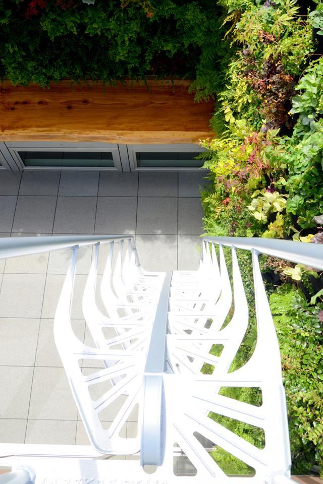 vertical garden (6).jpg