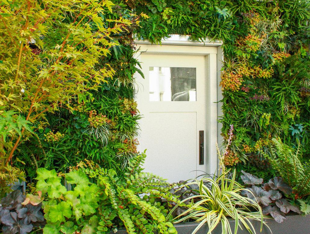 Green wall with door.jpg