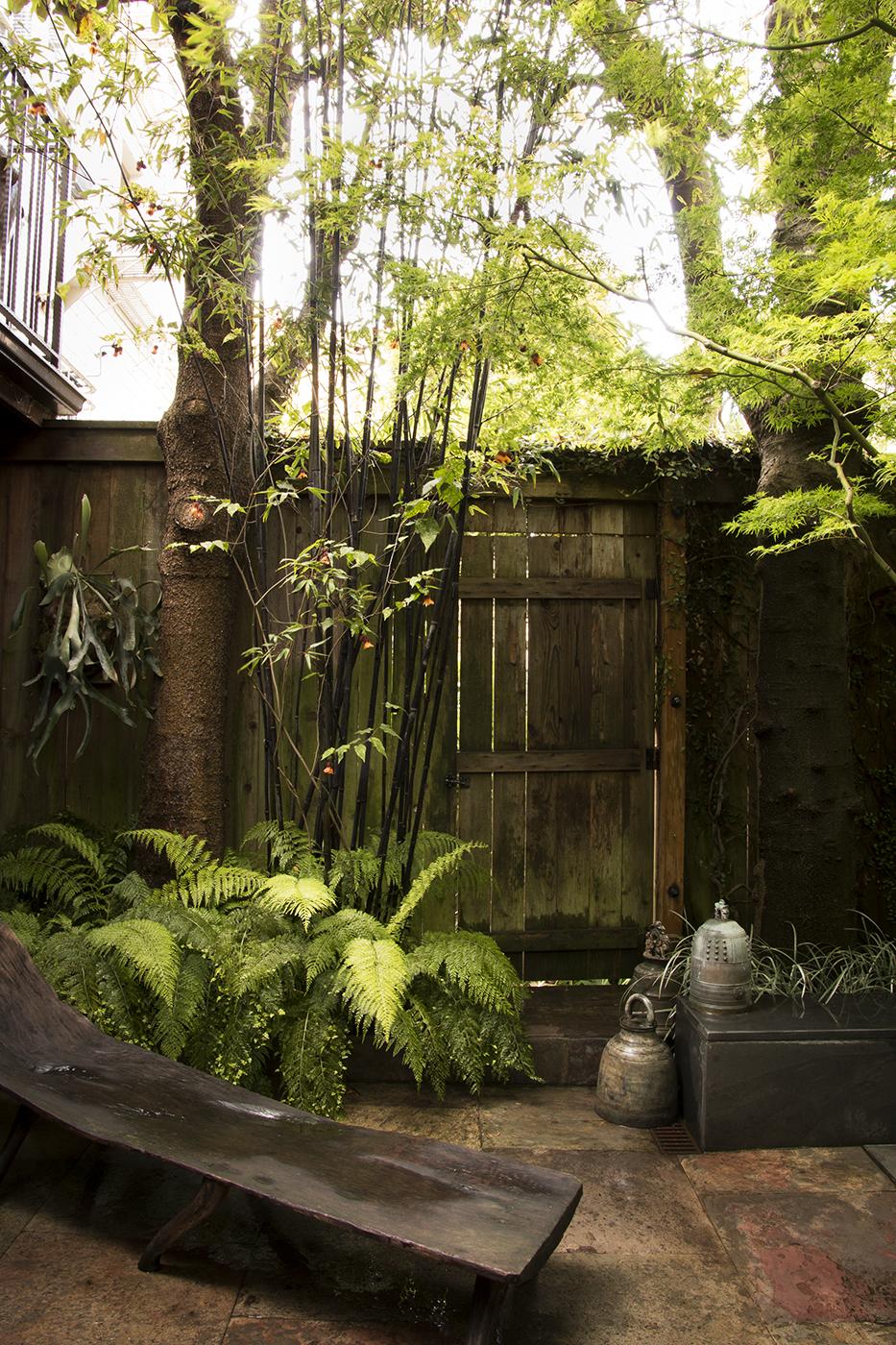 Secret Garden_5000.jpg