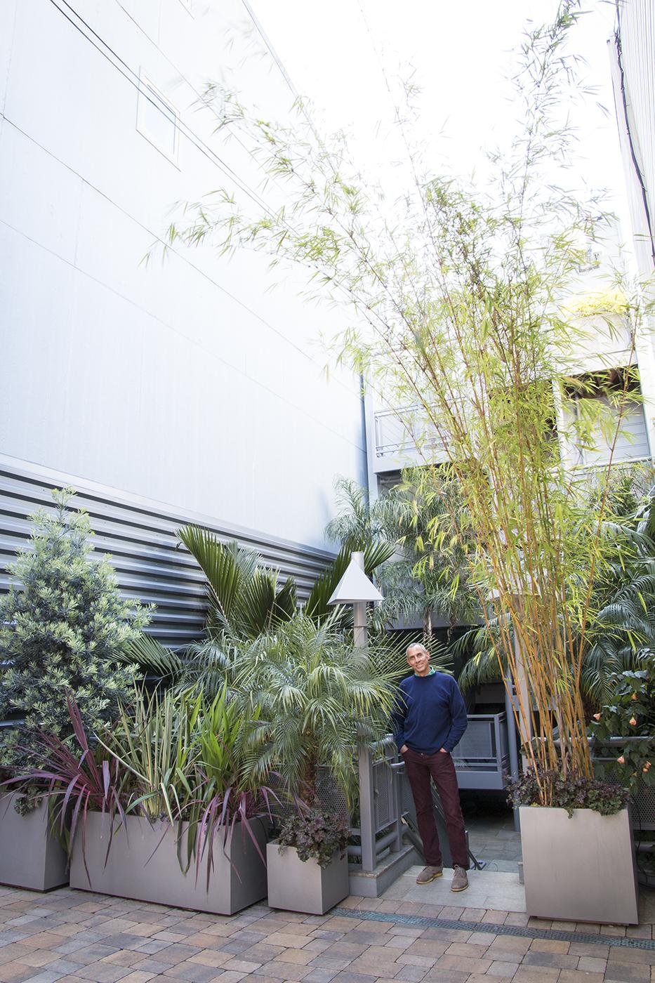 Debra's Vertical Garden_6004.jpg