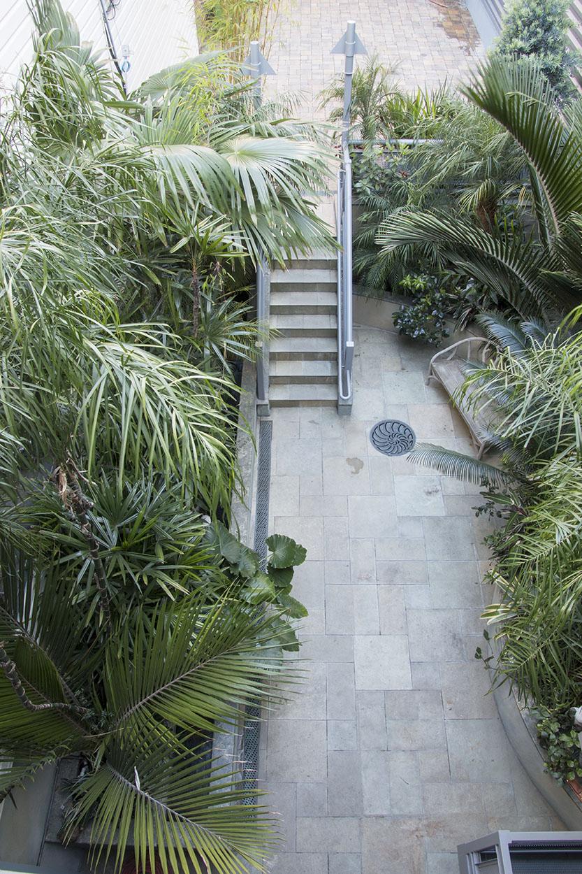 Debra's Vertical Garden_6022.jpg