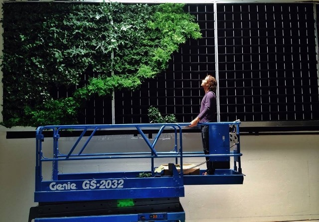 Brandon Pruett installing the plants.