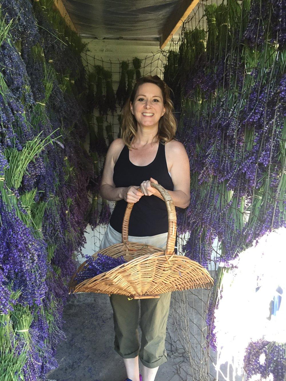 Enjoying the wonderful lavender in Woodinville!