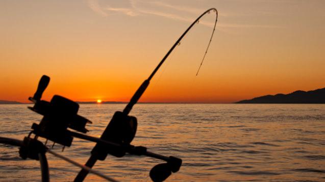 fishing rod.jpg