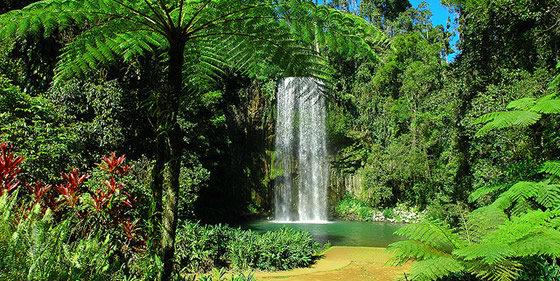 water fall milla milla.jpg