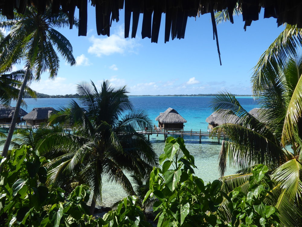 Sofitel Private Island View.JPG