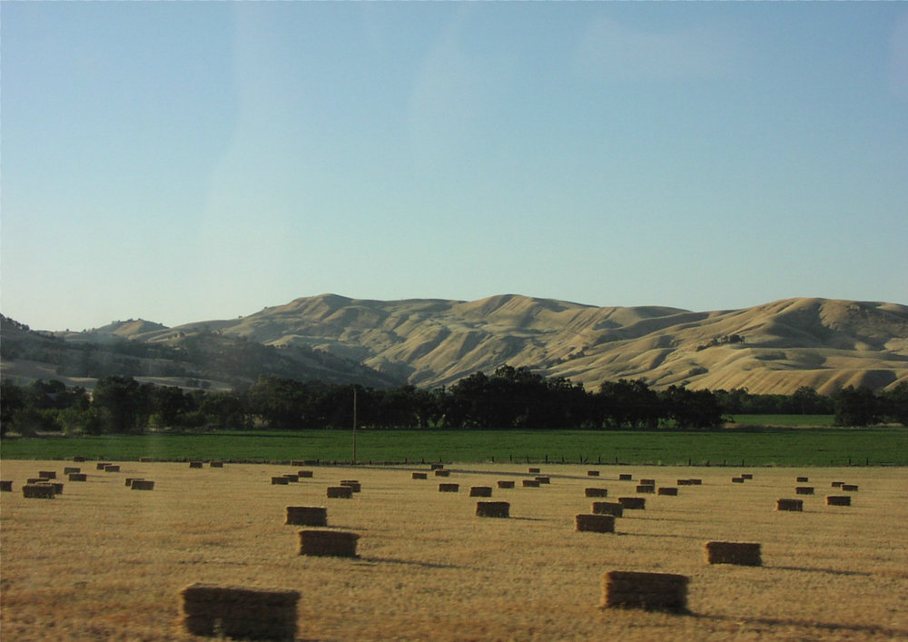 Capay Valley, CA, Fields, Yolo County. By No machine-readable author provided. Theblog assumed (based on copyright claims). [Public domain], via Wikimedia Commons