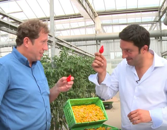 Check out Mike Baess' visit to our farm where he took on the 10 Chilli Challenge with Salvatore.