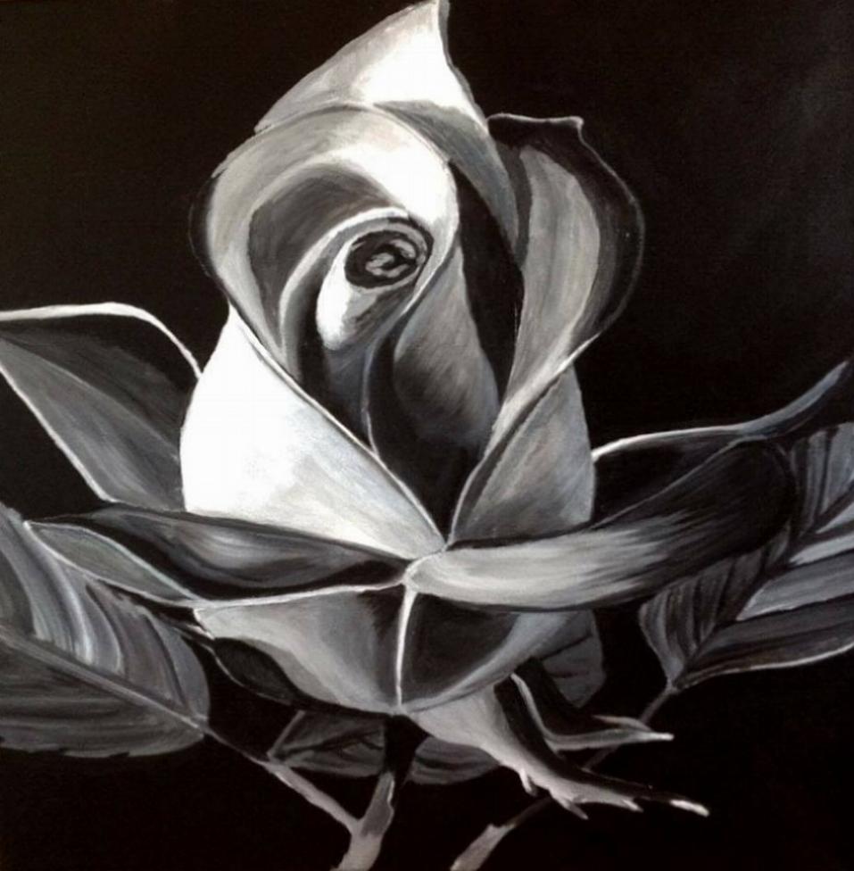 Black beauty cheryl neroni artist black beauty izmirmasajfo