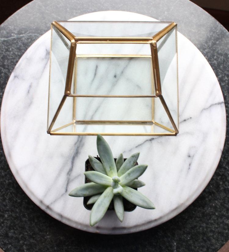 Diy Geometric Succulent Terrarium Get It Juli