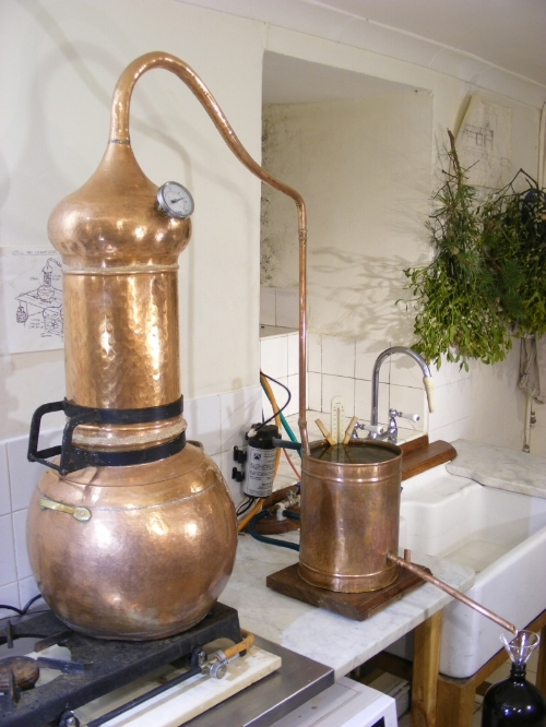 Copper alembic still for distilling herbs into hydrosols for our flower essence sprays.