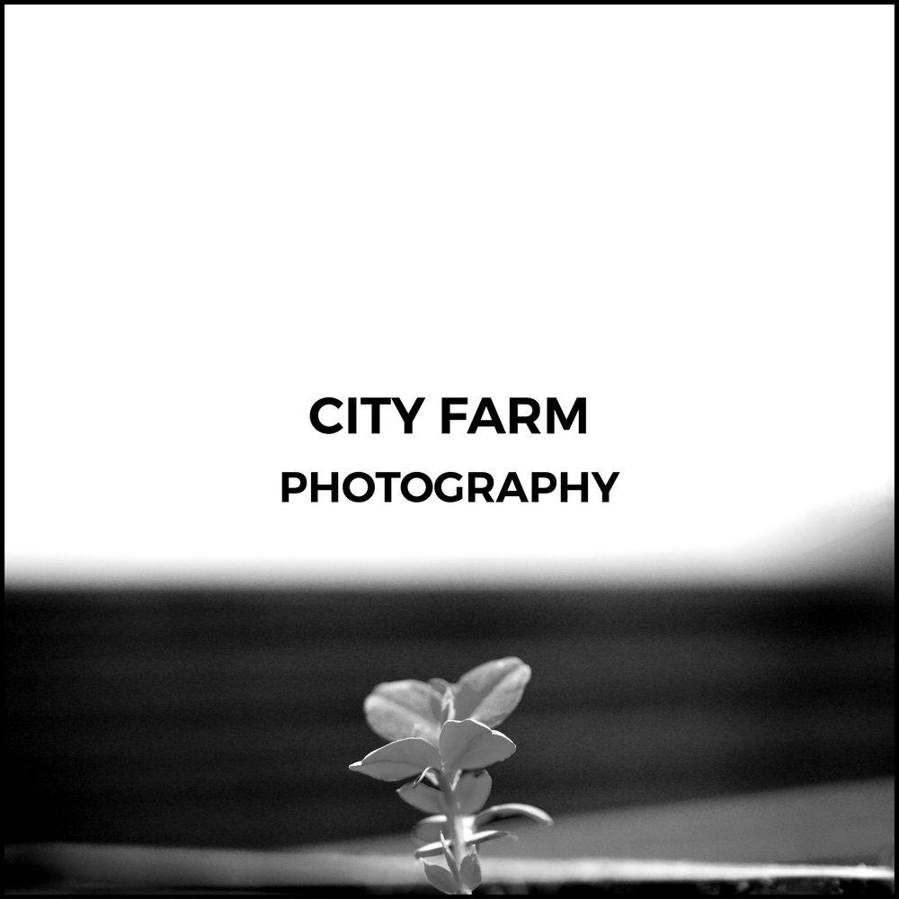 City Farm2.jpg