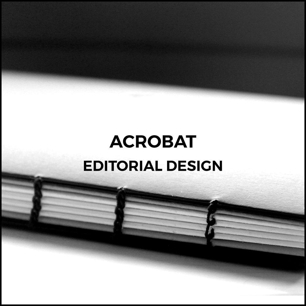Acrobat2.jpg