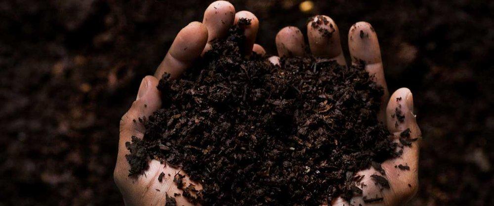 waste-compost.jpg