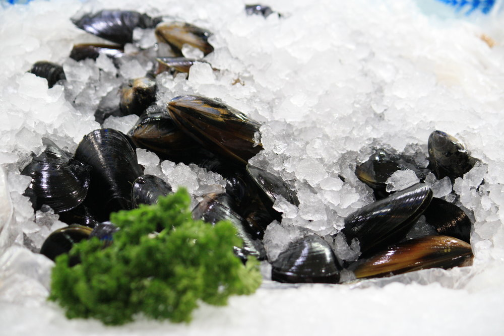 Seafood - All of our seafood is ready to cook for your convenience.Our most popular meals include:Fish and Chips - $7.50 - Hamburger - $5.50 - Shore Meal - $8.50 - Fish Cocktail Meal - $8.50- Calamari Meal - $7.50 - Fish Burger - $5.99 -   Nipper Meal - $6.50 - Seafood Meal - $13.50- Manly Meal - $13.50- Family Meal - $25.99- Marina Meal - $23.99 - King Meal - $29.99 -