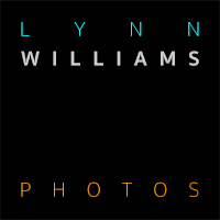 Lynn Williams Photos