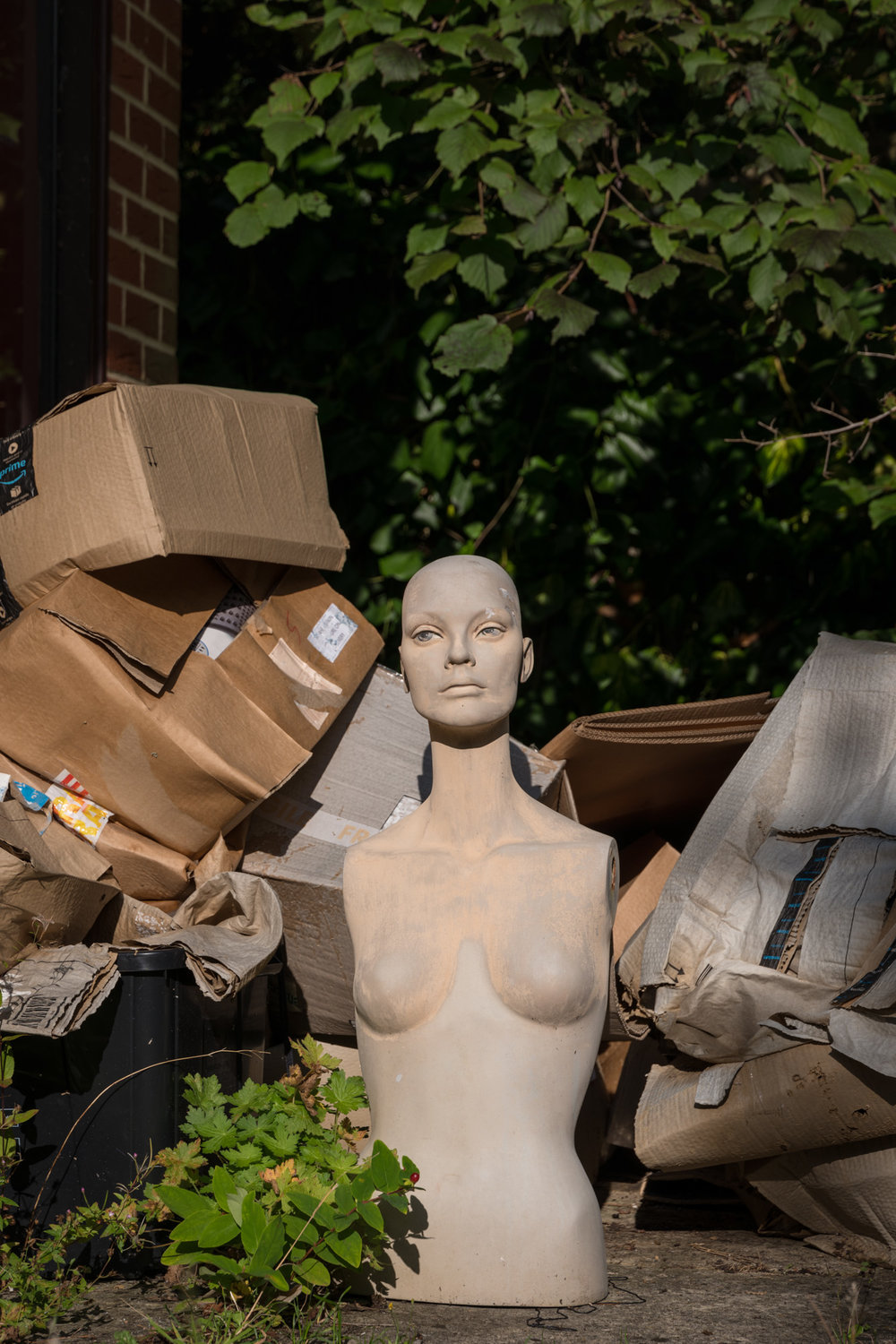 Mannequin with Boxes in a Yard