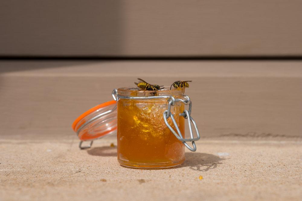 Jam Jar on a Window Ledge