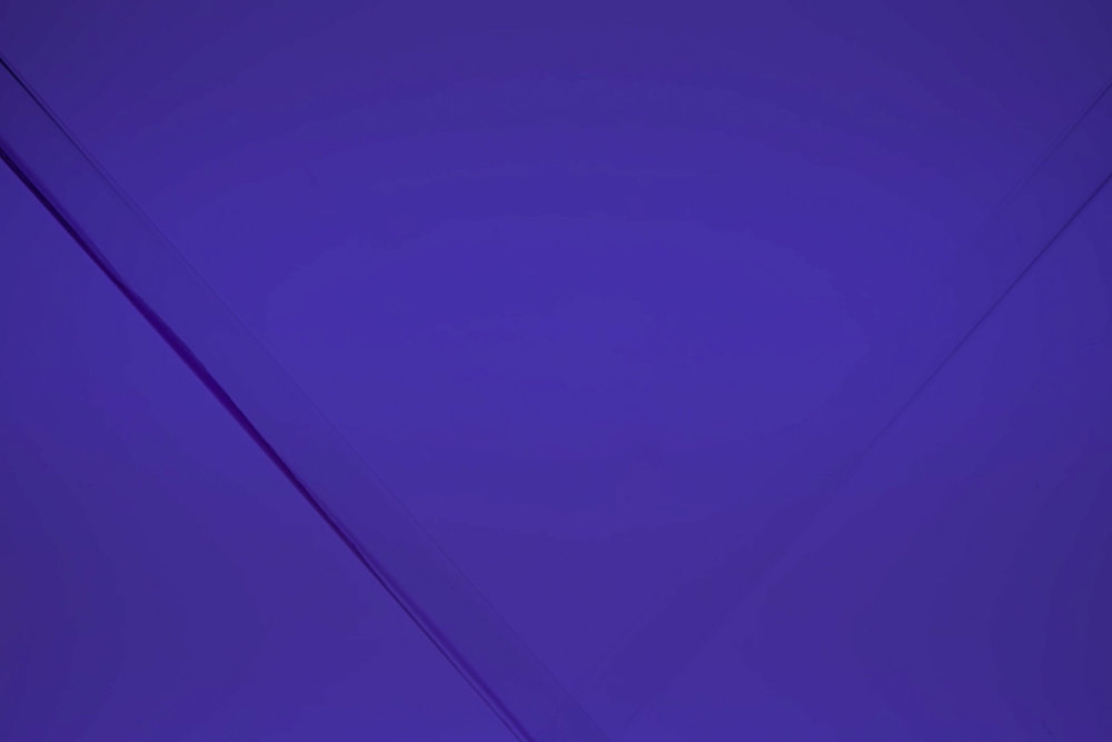 Blaurohreneu.jpg