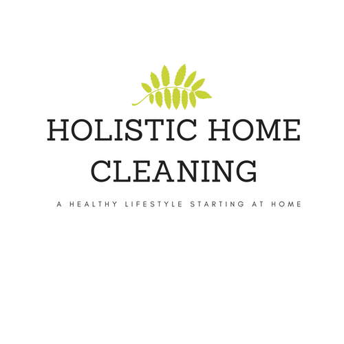 Holistic HomeCleaningModernlogo2.png