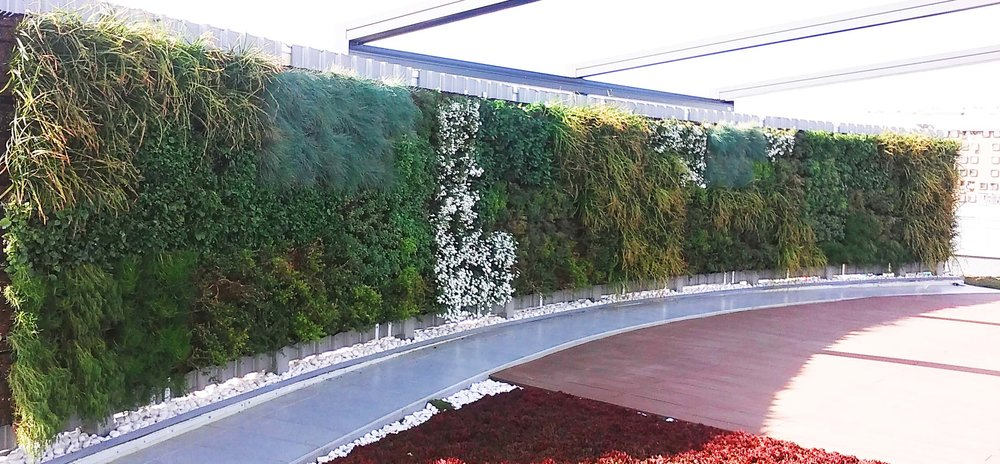 Green wall in Belgrade