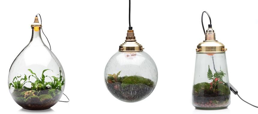 hero-spruitje-pendant-terrariums.jpg
