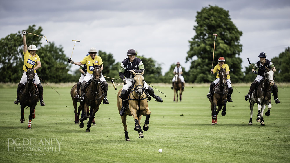 Polo website 1200px 16x9.jpg