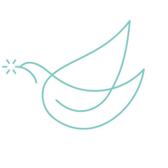 This is my logo Tara @tarathestreet and Liz of Braid Creative made for my AIR BEAUTIFUL.  So cute, I love this!! This logo is so perfect for me since I'm a free bird.  Can you see a little snowflake the bird is carrying?  My mission is to help everyone fly freely without physical or mental limitations.  Just like this bird 🕊🕊🕊. #travelwellness #lifeisbeautiful #lifestyle #traveltips #selfcaretips #relaxationtips #airbeautiful ##airbeautifulbysnow
