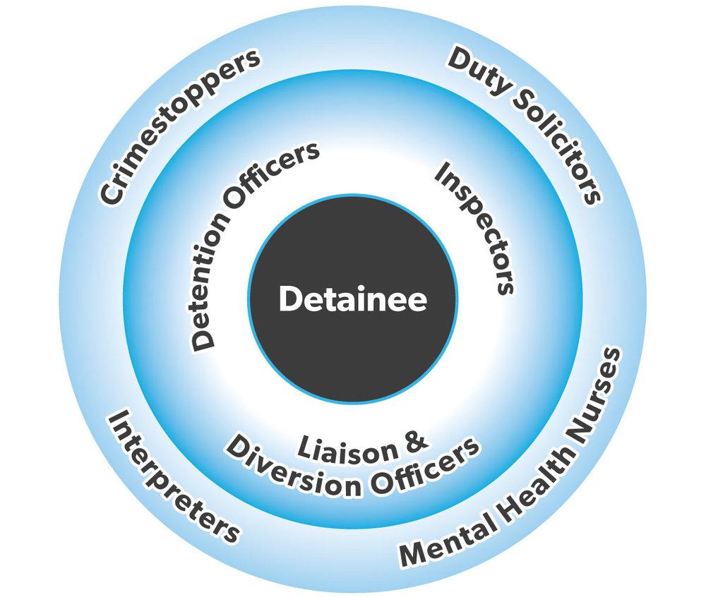 DMVS-Detainee-Graphic.jpg