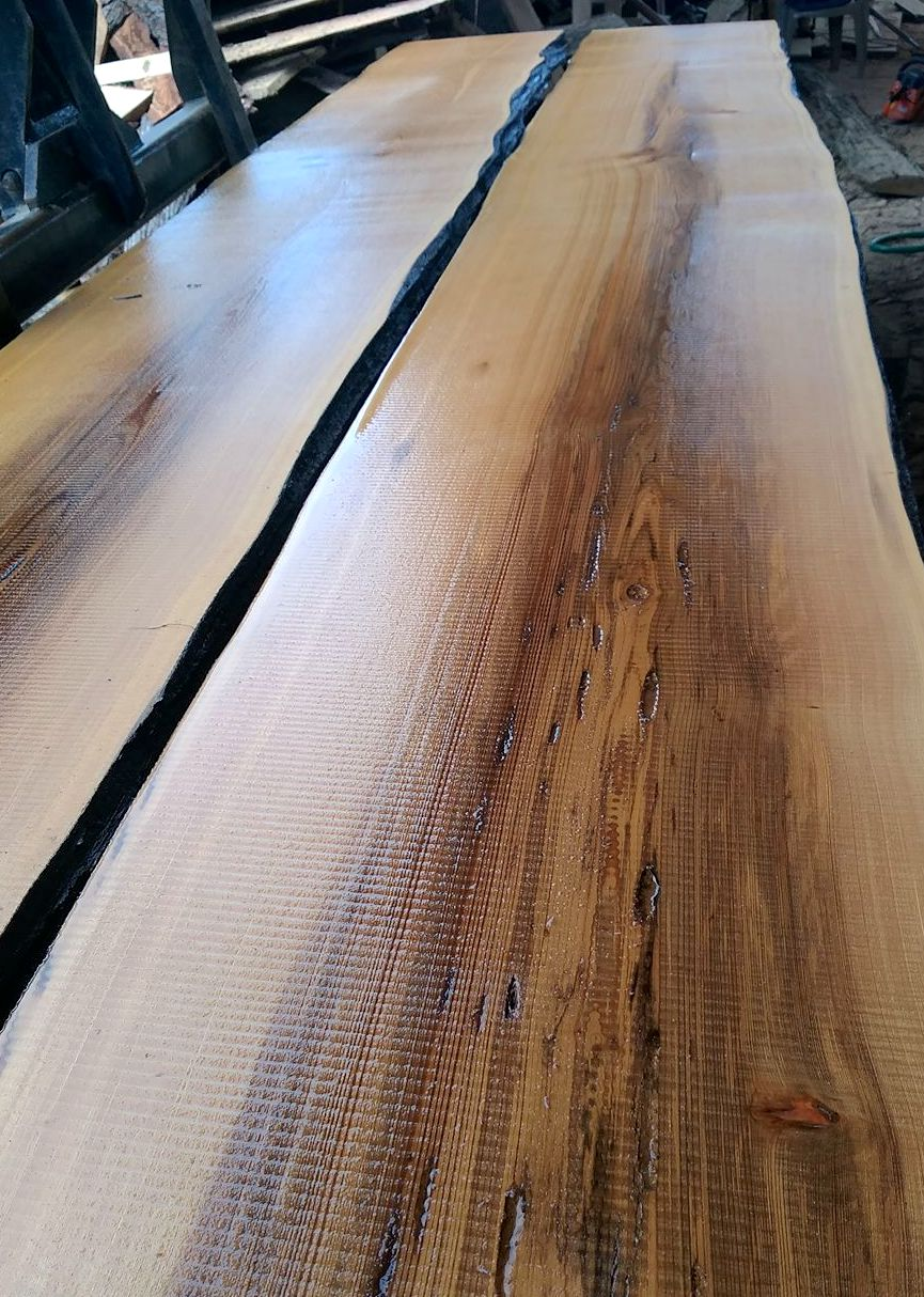 sinker cypress tops for sale.jpeg