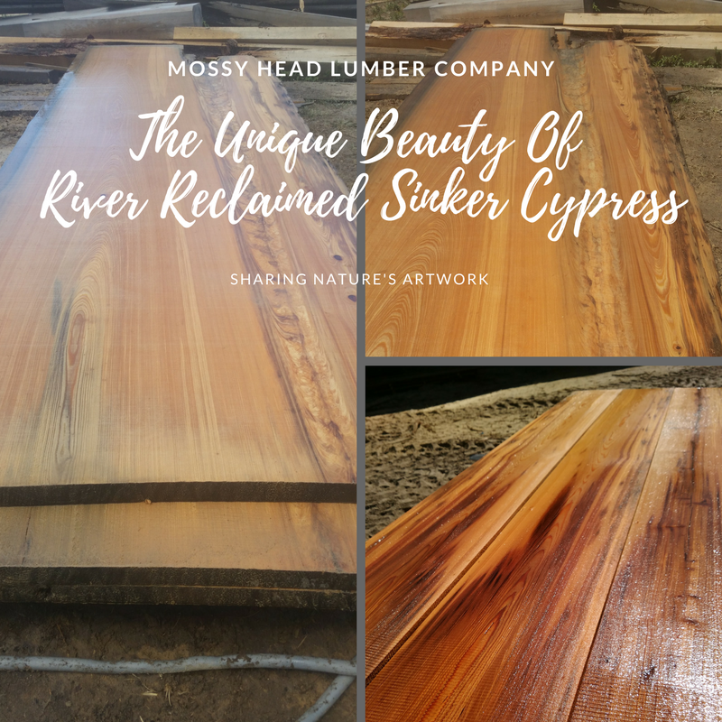 The Unique Beauty of River Reclaimed Sinker Cypress-3.png