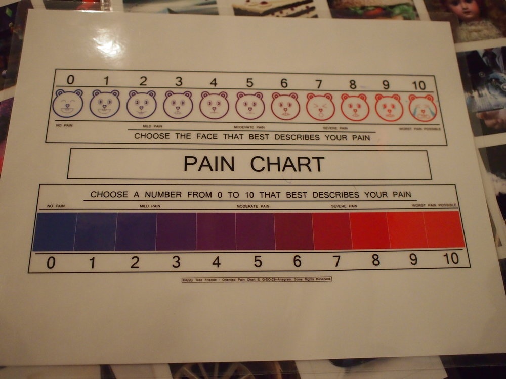 Pain Chart used by Bridgette Moser for visitor survey