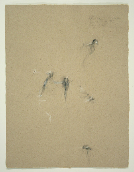 Animals II, 1992, Pencil on Handmade Paper, 26 in. x 19.5 in.
