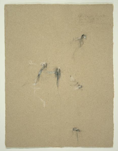 Animals II, 1992, Pencil on Binder's Board, 26 in. x 19.5 in.