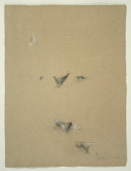 Animals I, 1992, Pencil on Handmade Paper, 26 in. x 19.5 in.