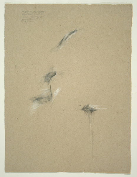 Animals IV, 1992, Pencil on Handmade Paper, 26 in. x 19.5 in.