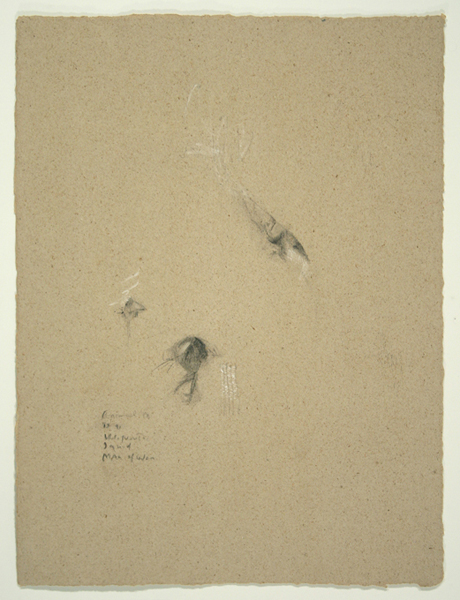 Animals III, 1992, Pencil on Handmade Paper, 26 in. x 19.5 in.