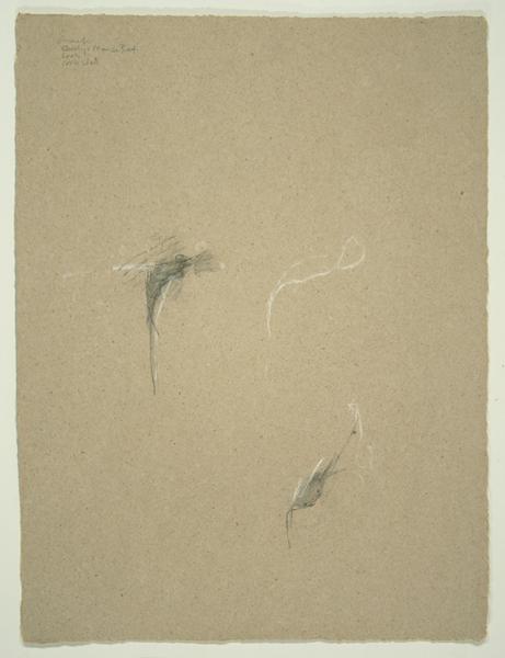 Animals VI, 1992, Pencil on Binder's Board, 26 in. x 19.5 in.