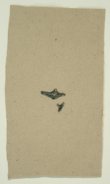 Animals Prototype, 1992, Bone on Handmade Paper, 26 in. x 17 in.
