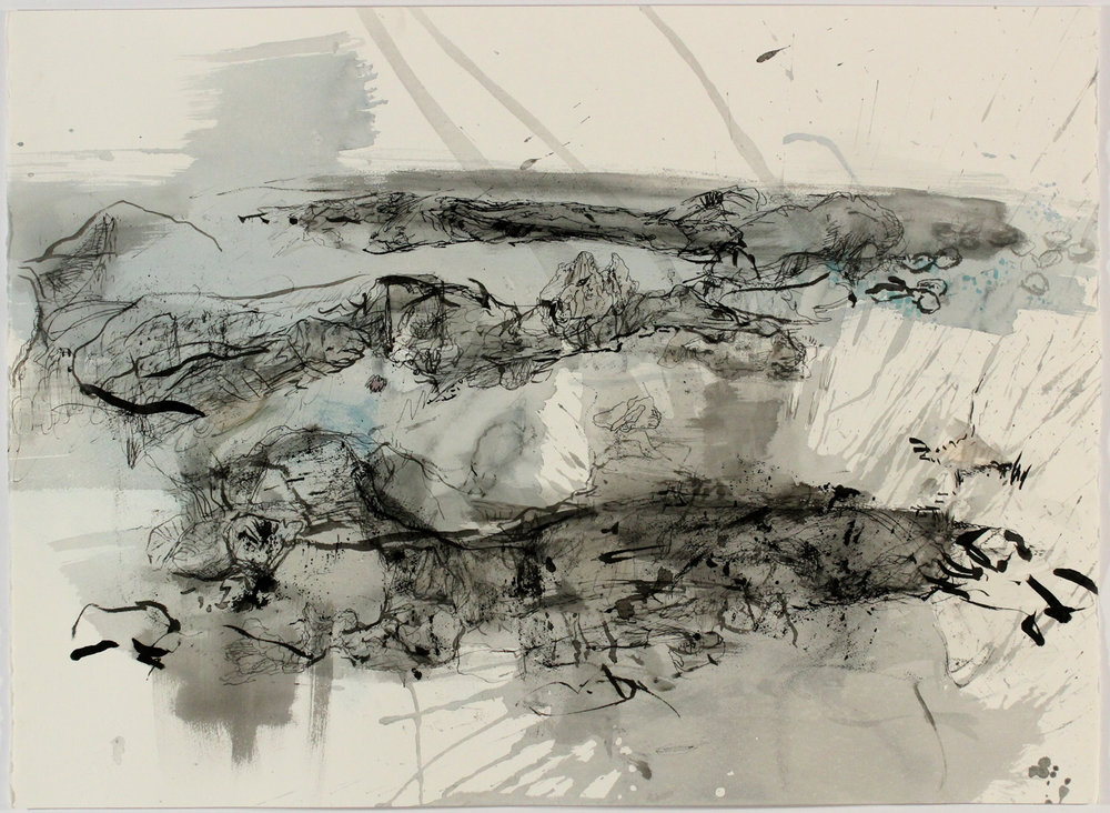 Near Frying Pan Shoals 1, 2013, Ink on Paper, 22 in x 30 in