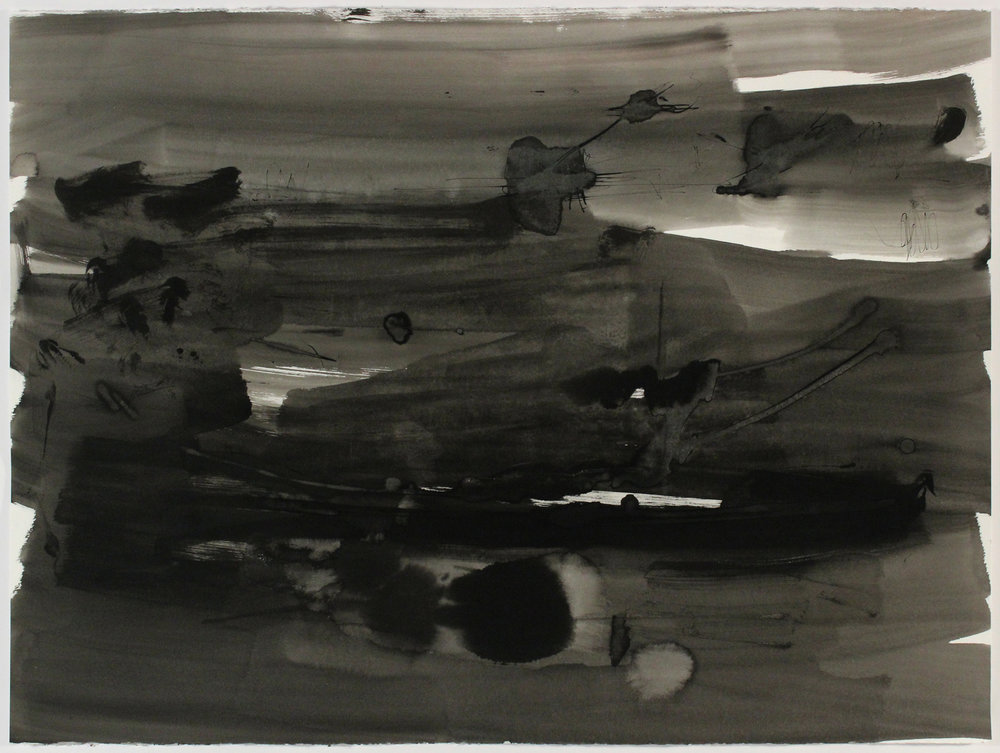Near Frying Pan Shoals 2, 2013, Ink on Paper, 22 in x 30 in