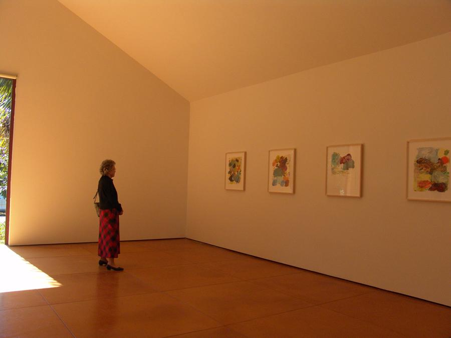 Preoccupations, 2008   Devin Borden Hiram Butler Gallery,  Houston