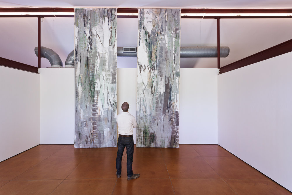 Maritime Forest, 2013   Hiram Butler Gallery,  Houston