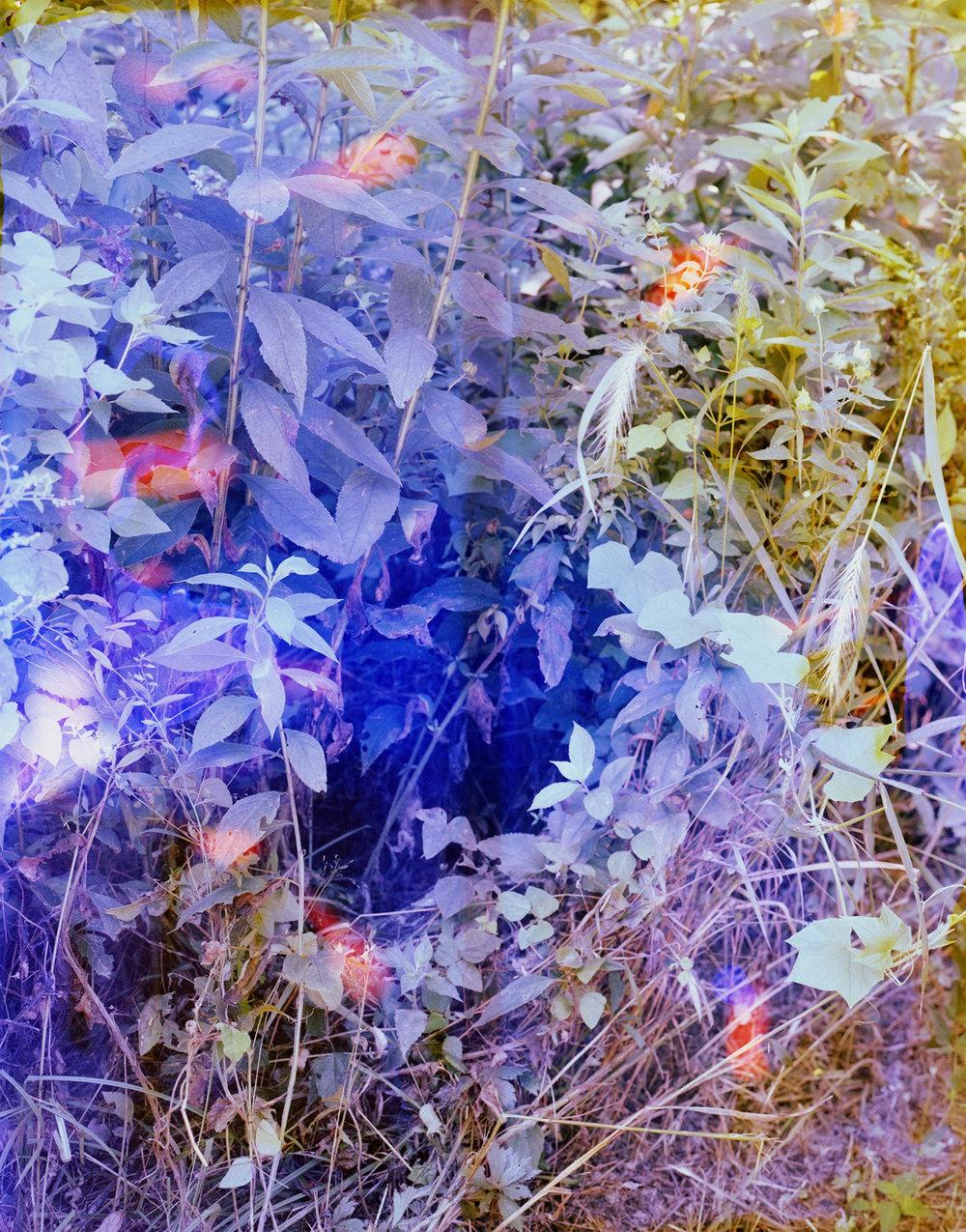 Reenactment 231 (Blue), 40 x 32 in, 2016